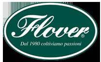 logo-flv
